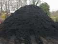 black mulch cropped
